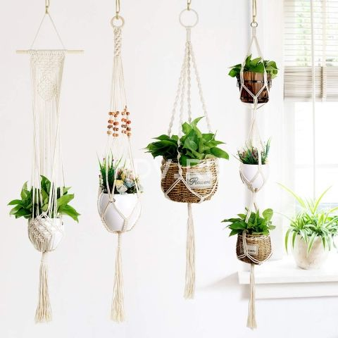 Растения в интерьере: как быстро и эффектно озеленить квартиру